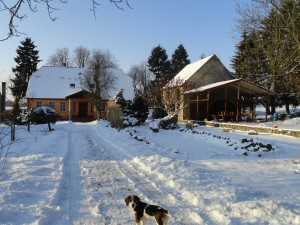 Zima w Albini