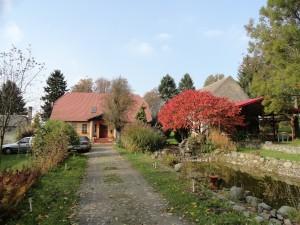 Jesień w Albini